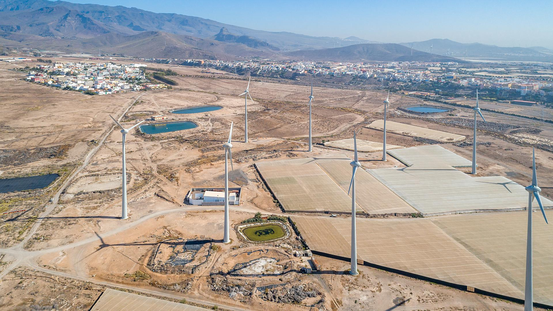 Ecoener is the most successful bidder in the Canary Islands wind energy tender process, securing 31 MW of capacity